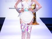 2017年第一次国际时装周即将在胡志明市举行