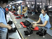 越南鞋类企业提高经营与出口能力
