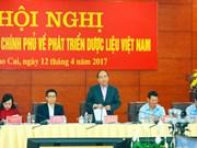 阮春福主持召开全国药材发展工作视频会议