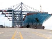 越南巴地头顿省新集装箱码头迎来首艘巨型集装箱船