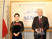 国会主席阮氏金银与捷克参议院主席米兰·什捷赫举行会谈