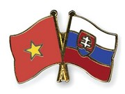 进一步加强越南与斯洛伐克的民间交流