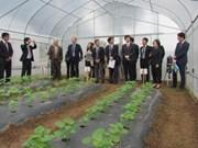 许多日本企业希望赴河南省对农业领域进行投资