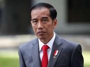 印尼总统即将访问香港 推动双方经济合作