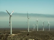 印度尼西亚大力推进风电项目建设