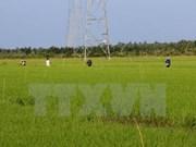 放宽九龙江平原农业用地拥有量限制面向大生产