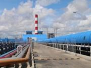 胡志明市市委书记阮善仁视察沿海电力中心环境保护工作
