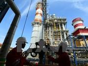 郑廷勇副总理要求越南油气电力总公司加快各发电项目的施工进度