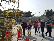 越南承天顺化省接待游客量约达150万人次