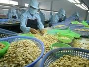 2017年越南腰果对欧盟出口额有望达10亿美元
