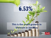 越南银行业贷款增长6.53%