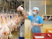 越南首批禽类产品将于今年年底抵达日本