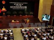 胡志明市人民议会第四次会议聚焦城市环境问题