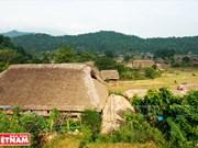 河江市的草屋村——国内外游客的有趣旅游点