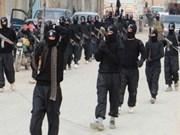 """《雅加达邮报》:东盟各国应团结打击极端组织""""伊斯兰国"""""""