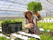 日本协助安江省发展农业  应对气候变化