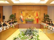 越南国会主席阮氏金银与柬埔寨国会主席韩桑林举行会谈