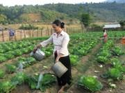 西原地区贫困户比率年均下降2.8%