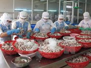 九龙江三角洲地区货物出口额猛增