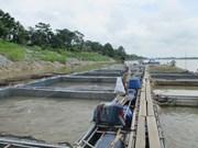 富寿省朝着商品生产方向推动水产养殖业发展