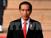 印度尼西亚总统佐科即将访问土耳其