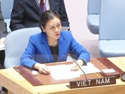 越南高度评价各国投票通过《禁止核武器条约》