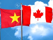越南与加拿大举行首次政治磋商