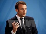 越南领导人向法国领导人致国庆贺电