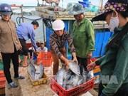 越南中部四省海洋环境质量总体稳定