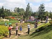 今年上半年林同省大叻市接待游客量为295万人次