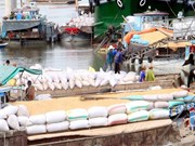 越南力争2017年大米出口量达570万吨