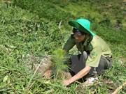 越南承诺成功实现可持续发展目标