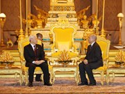 越共中央总书记阮富仲与柬埔寨国王诺罗敦·西哈莫尼举行会谈