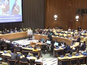 越南积极实现联合国可持续发展目标