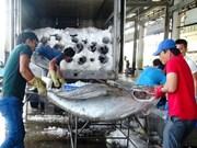 越南金枪鱼产品出口到世界97个国家