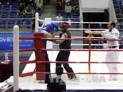 300多名运动员参加第26次越南全国传统武术锦标赛