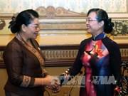 胡志明市与老挝万象加强人民议会的合作