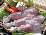 今年上半年越南墨鱼和章鱼对韩国出口猛增