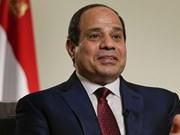 埃及总统对越南进行国事访问成为越埃关系历史上的重要里程碑