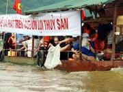 越南在泸江上放生1.2吨鱼苗  恢复水产资源