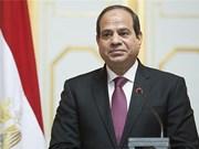 埃及投资与国际合作部部长:埃及总统访越将为越埃关系注入新动力