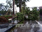 第十号台风给越南中部各省造成特大损失