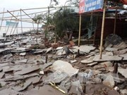 越南祖国阵线中央委员会发出紧急公函指导各省市开展第十号台风应急措施