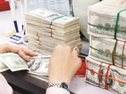 19日越盾兑美元中心汇率上涨4越盾