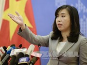 越南随时采取必要措施保护公民正当合法权利