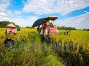 越南加大对农业招商引资力度