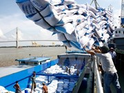越南大米出口活动释放可观信号