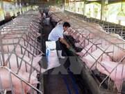 越南Olmix Asialand有限公司饲料添加剂生产厂投入运营