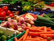 越南努力扩大蔬果产品在欧盟的市场