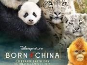 2017年越南APEC电影周今日在岘港市开幕